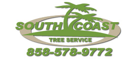 South Coast Tree Logo